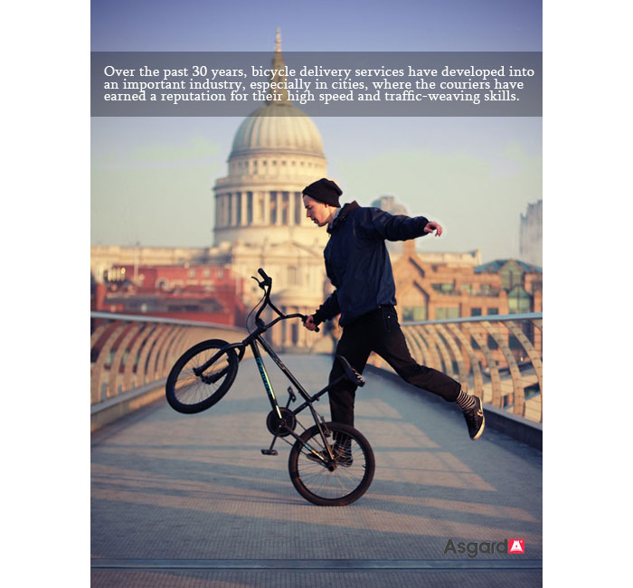 Asgard Bike Facts Eight