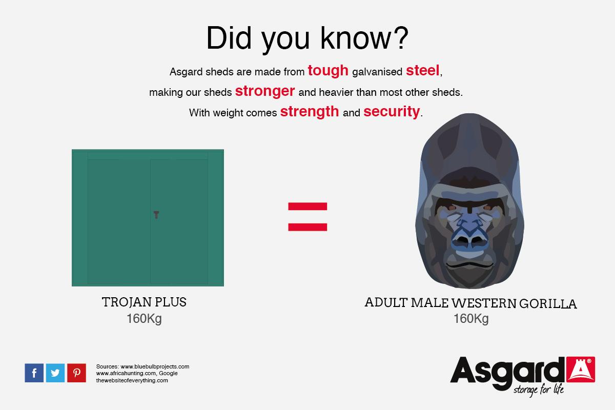 A Trojan and Gorilla weigh the same