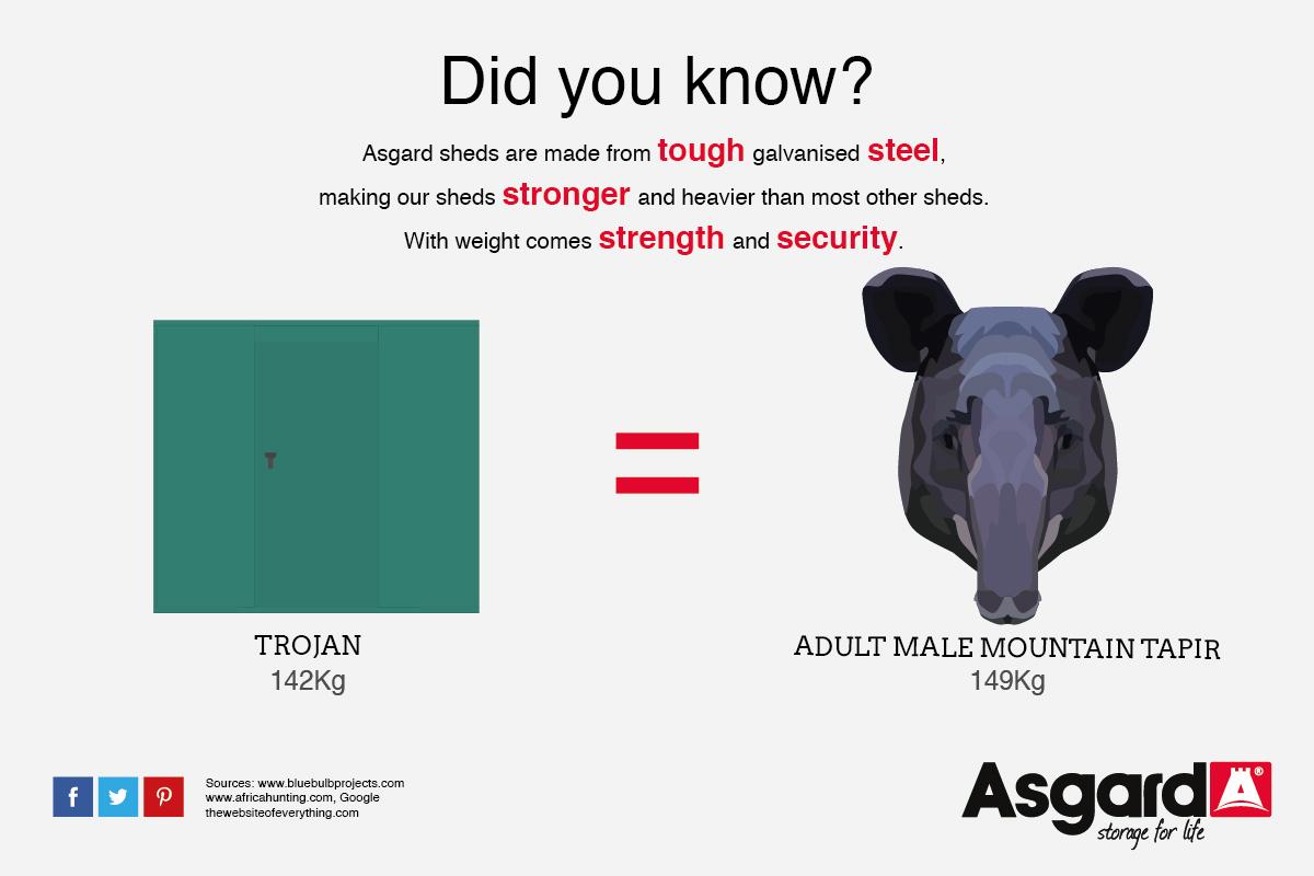 A Trojan and a Tapir weigh the same