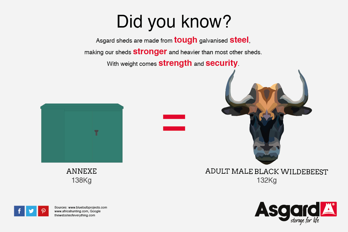 Annexe and Wildebeest weigh the same