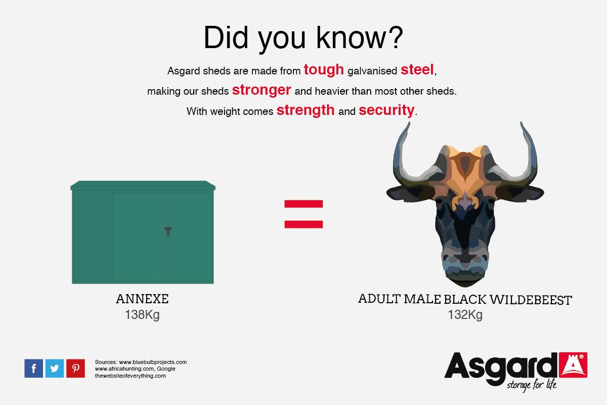 Annexe and Wildebeest weigh the same