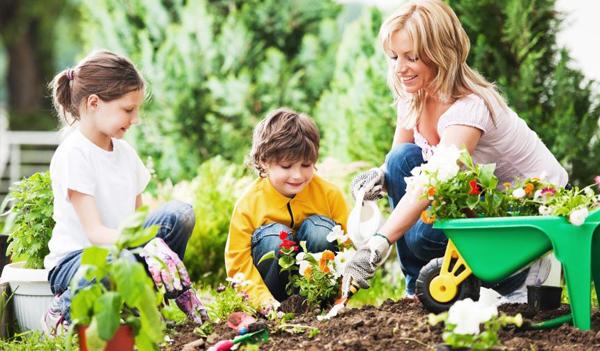 Get the Kids Gardening