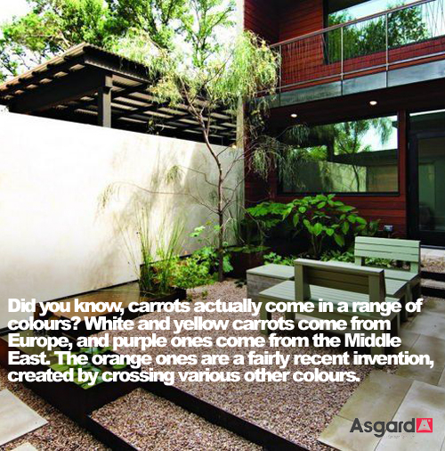 Garden Facts 07