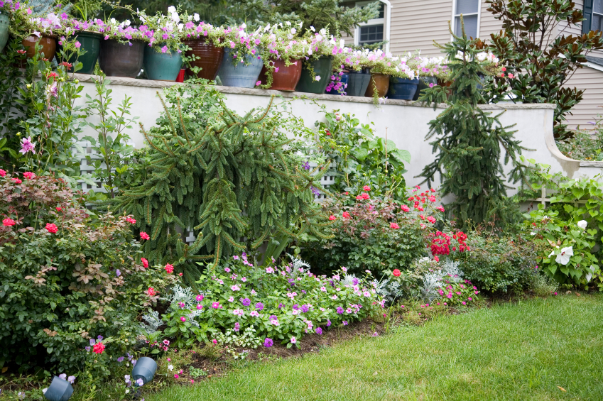 protect your garden from theft