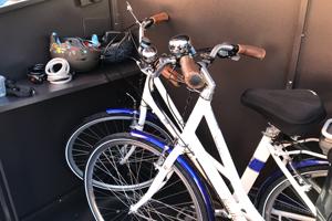 Inside an Asgard Access E Plus Bike Shed