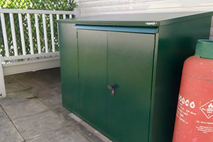 Asgard Secure Shed