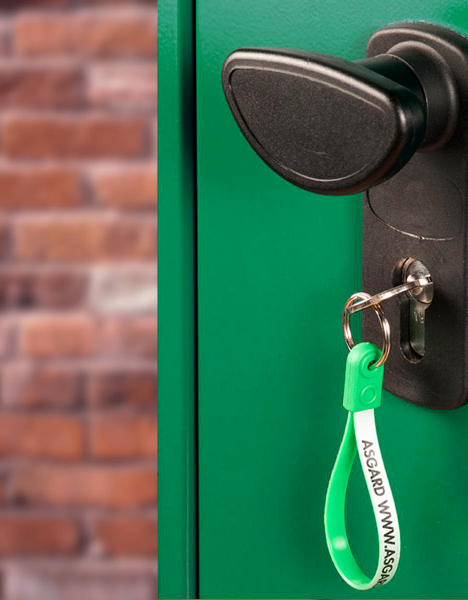 Pick and resistant locking system on Asgard sheds